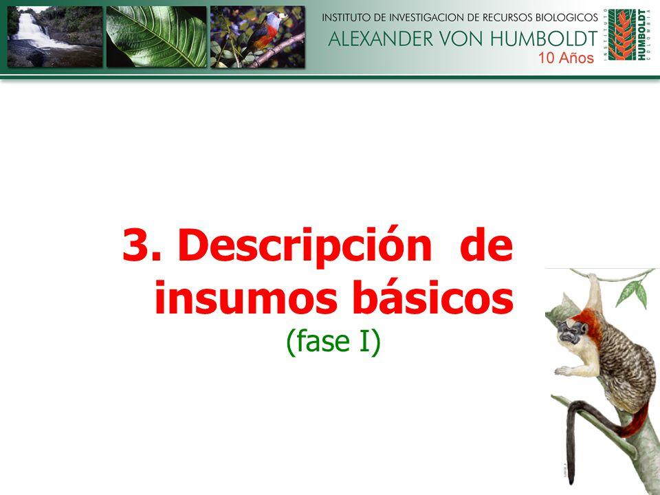 3. Descripción de insumos básicos (fase I)