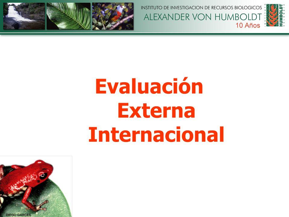 Evaluación Externa Internacional