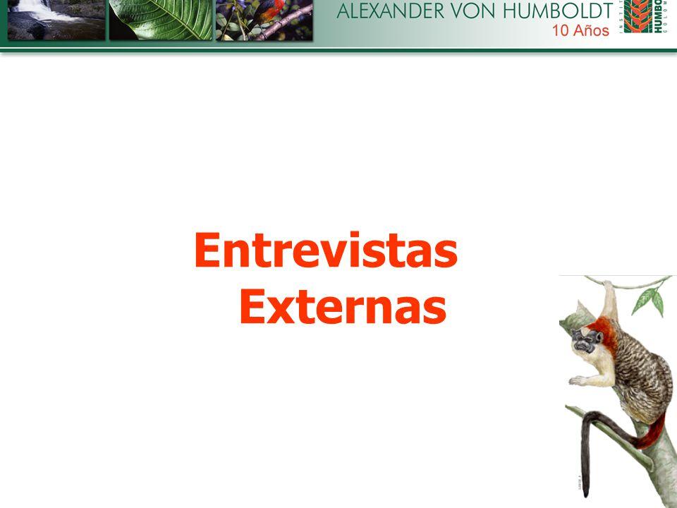 Entrevistas Externas