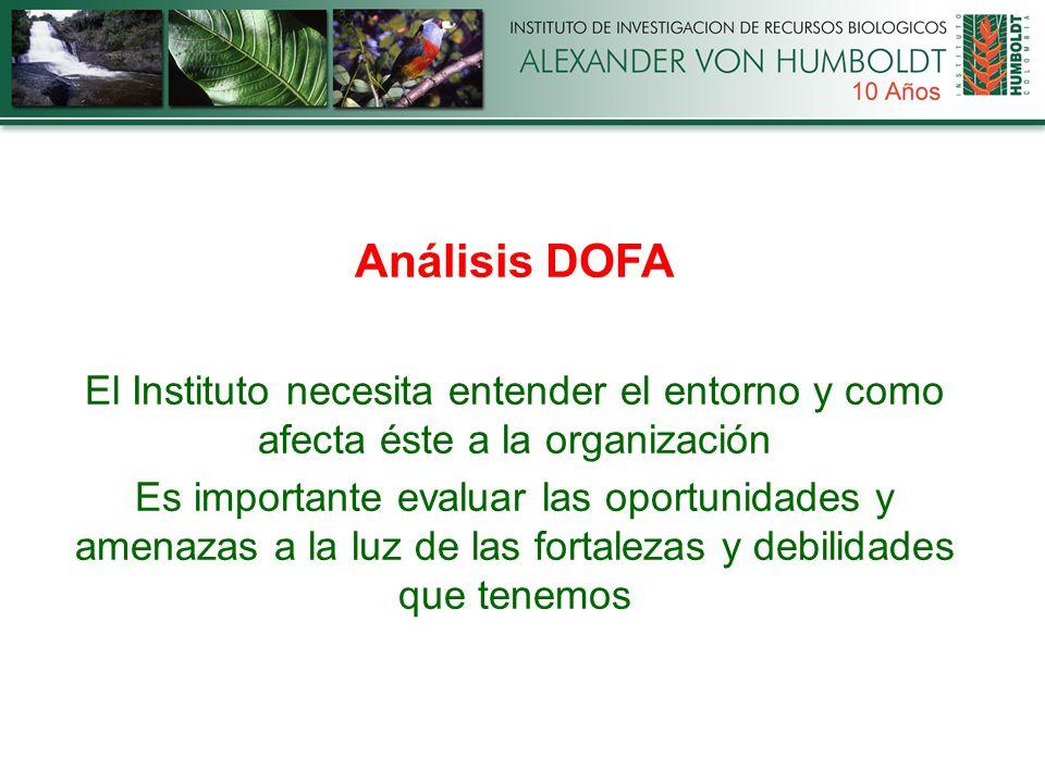 Análisis DOFA El Instituto necesita entender el entorno y como afecta éste a la organización Es importante evaluar las oportunidades y amenazas a la luz de las fortalezas y debilidades que tenemos