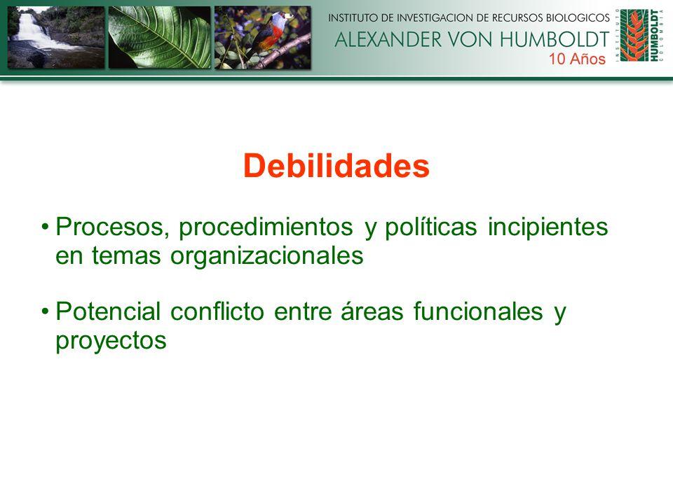 Debilidades Procesos, procedimientos y políticas incipientes en temas organizacionales Potencial conflicto entre áreas funcionales y proyectos