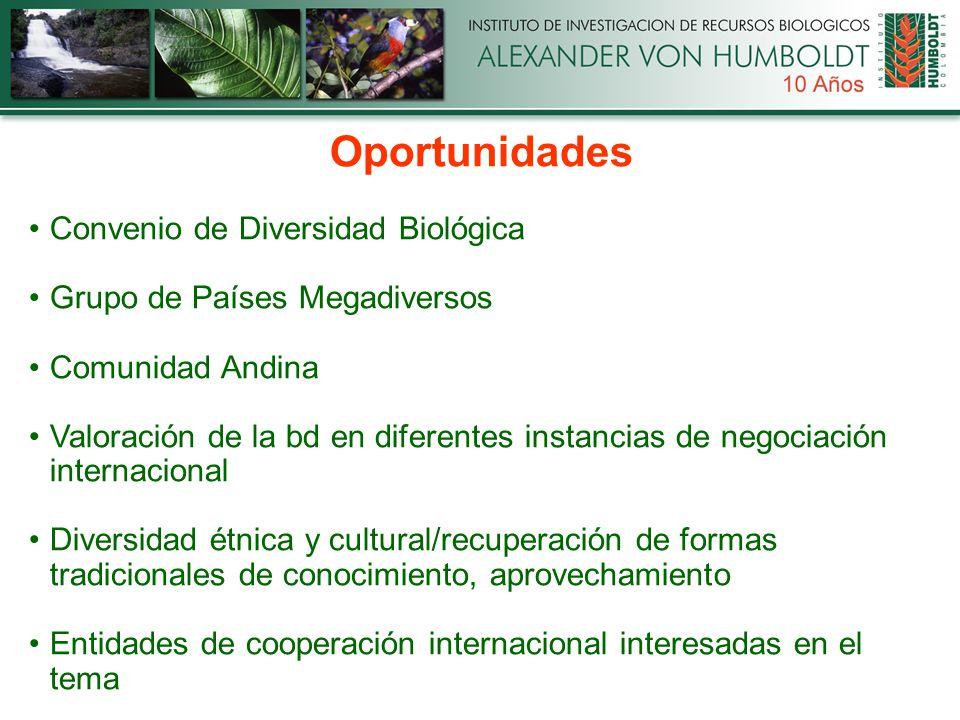 Oportunidades Convenio de Diversidad Biológica Grupo de Países Megadiversos Comunidad Andina Valoración de la bd en diferentes instancias de negociación internacional Diversidad étnica y cultural/recuperación de formas tradicionales de conocimiento, aprovechamiento Entidades de cooperación internacional interesadas en el tema