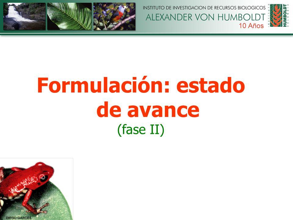 Formulación: estado de avance (fase II)