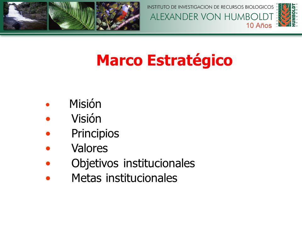 Marco Estratégico Misión Visión Principios Valores Objetivos institucionales Metas institucionales