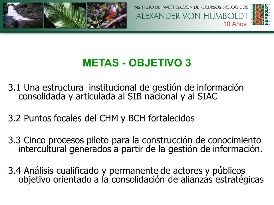 METAS - OBJETIVO 3 3.1 Una estructura institucional de gestión de información consolidada y articulada al SIB nacional y al SIAC 3.2 Puntos focales del CHM y BCH fortalecidos 3.3 Cinco procesos piloto para la construcción de conocimiento intercultural generados a partir de la gestión de información.