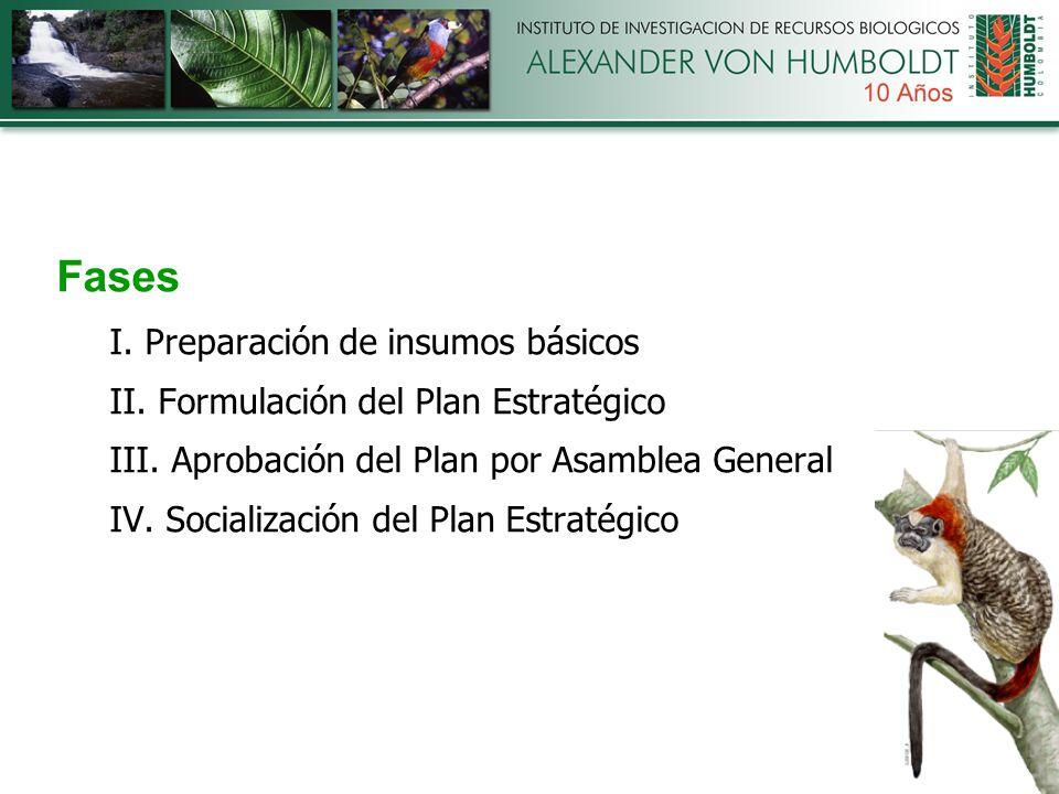 Fases I. Preparación de insumos básicos II. Formulación del Plan Estratégico III.