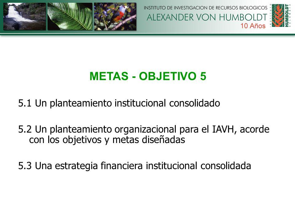 METAS - OBJETIVO 5 5.1 Un planteamiento institucional consolidado 5.2 Un planteamiento organizacional para el IAVH, acorde con los objetivos y metas diseñadas 5.3 Una estrategia financiera institucional consolidada