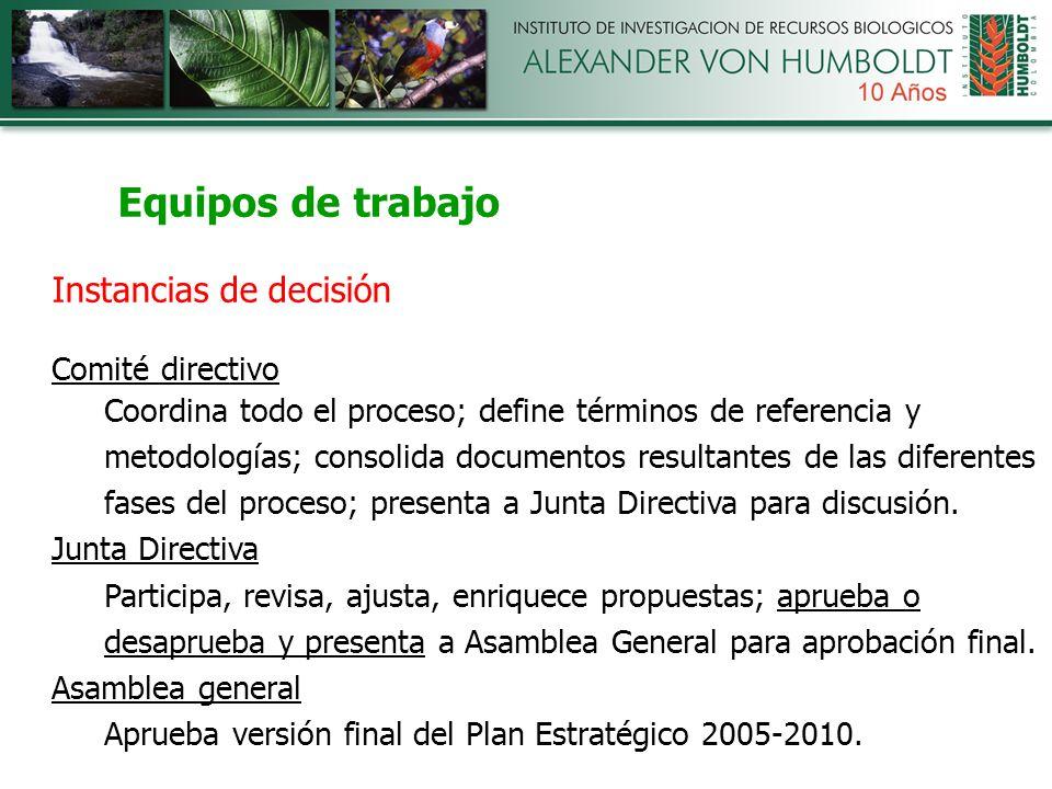 Equipos de trabajo Instancias de decisión Comité directivo Coordina todo el proceso; define términos de referencia y metodologías; consolida documentos resultantes de las diferentes fases del proceso; presenta a Junta Directiva para discusión.