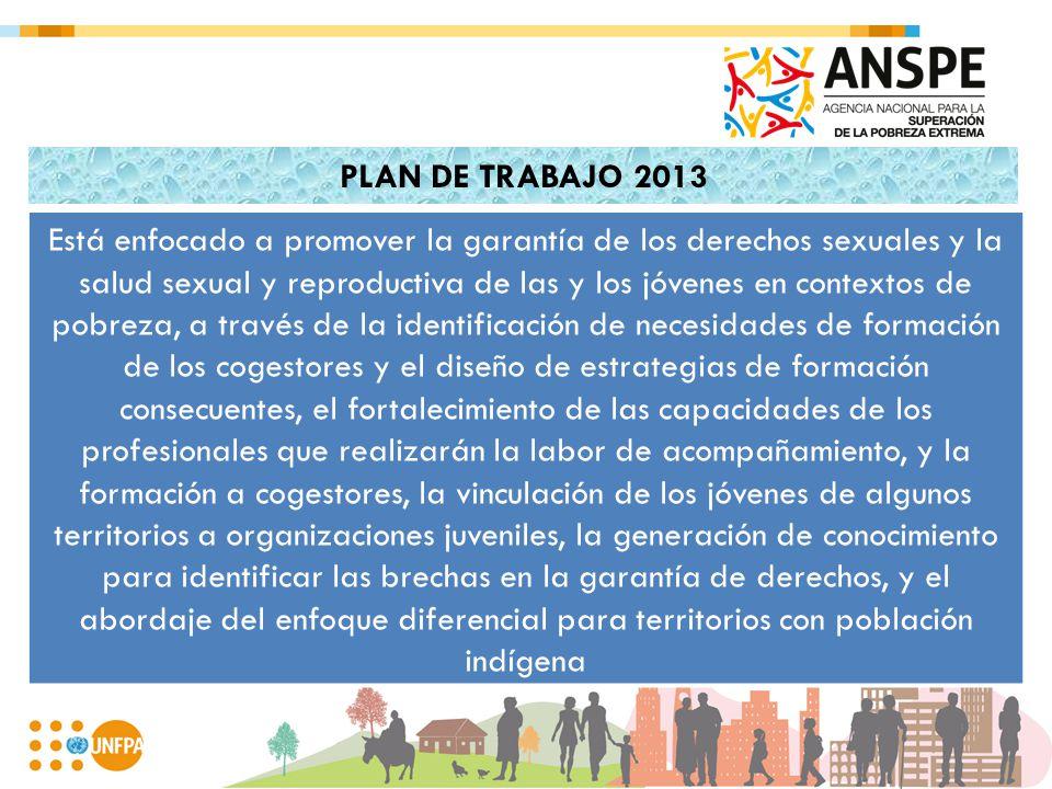 PLAN DE TRABAJO 2013 Está enfocado a promover la garantía de los derechos sexuales y la salud sexual y reproductiva de las y los jóvenes en contextos