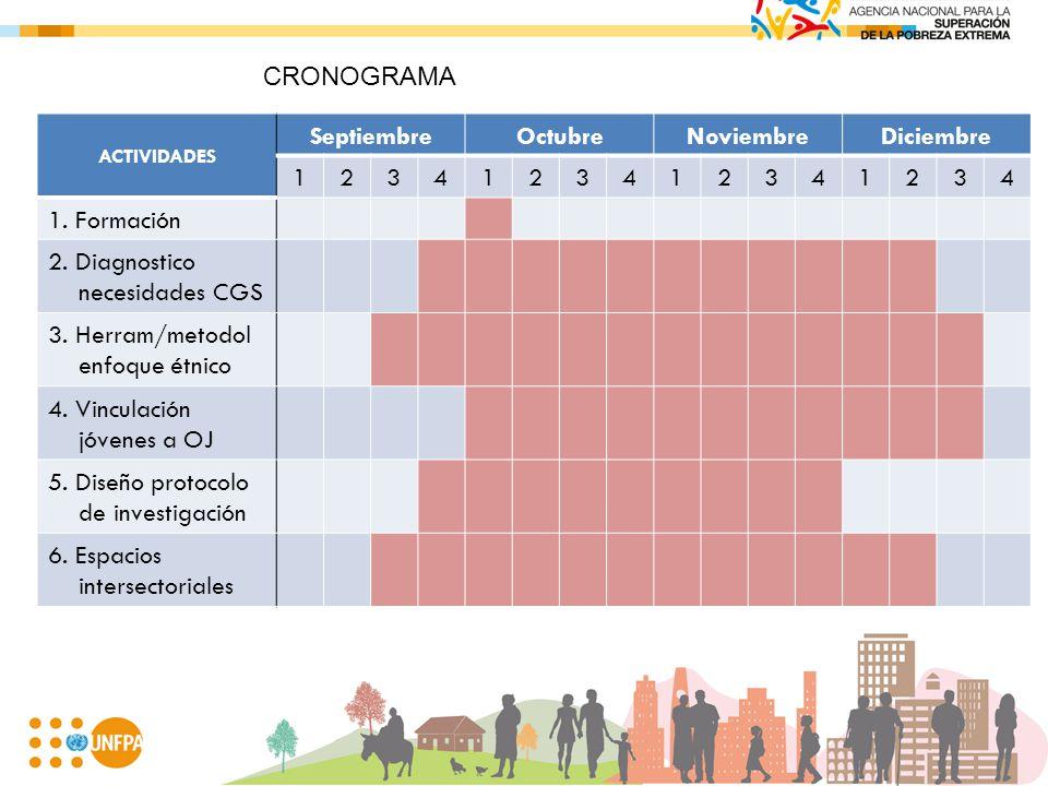ACTIVIDADES SeptiembreOctubreNoviembreDiciembre 1234123412341234 1. Formación 2. Diagnostico necesidades CGS 3. Herram/metodol enfoque étnico 4. Vincu