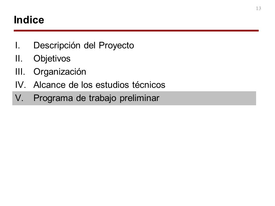 13 Indice I.Descripción del Proyecto II.Objetivos III.Organización IV.Alcance de los estudios técnicos V.Programa de trabajo preliminar