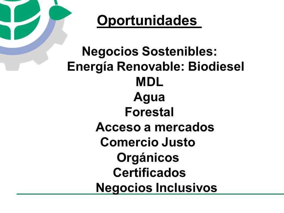CONSEJO EMPRESARIAL COLOMBIANO PARA EL DESARROLLO SOSTENIBLE - CECODES Oportunidades Negocios Sostenibles: Energía Renovable: Biodiesel MDL Agua Forestal Acceso a mercados Comercio Justo Orgánicos Certificados Negocios Inclusivos