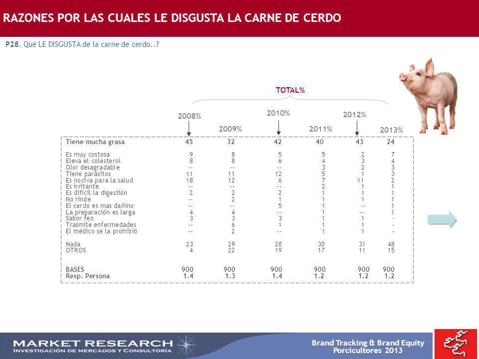 Brand Tracking & Brand Equity Porcicultores 2013 RAZONES POR LAS CUALES LE DISGUSTA LA CARNE DE CERDO P28. Qué LE DISGUSTA de la carne de cerdo..? Tie