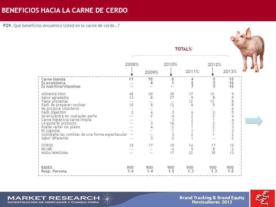 Brand Tracking & Brand Equity Porcicultores 2013 BENEFICIOS HACIA LA CARNE DE CERDO P29. Qué beneficios encuentra Usted en la carne de cerdo..? Carne