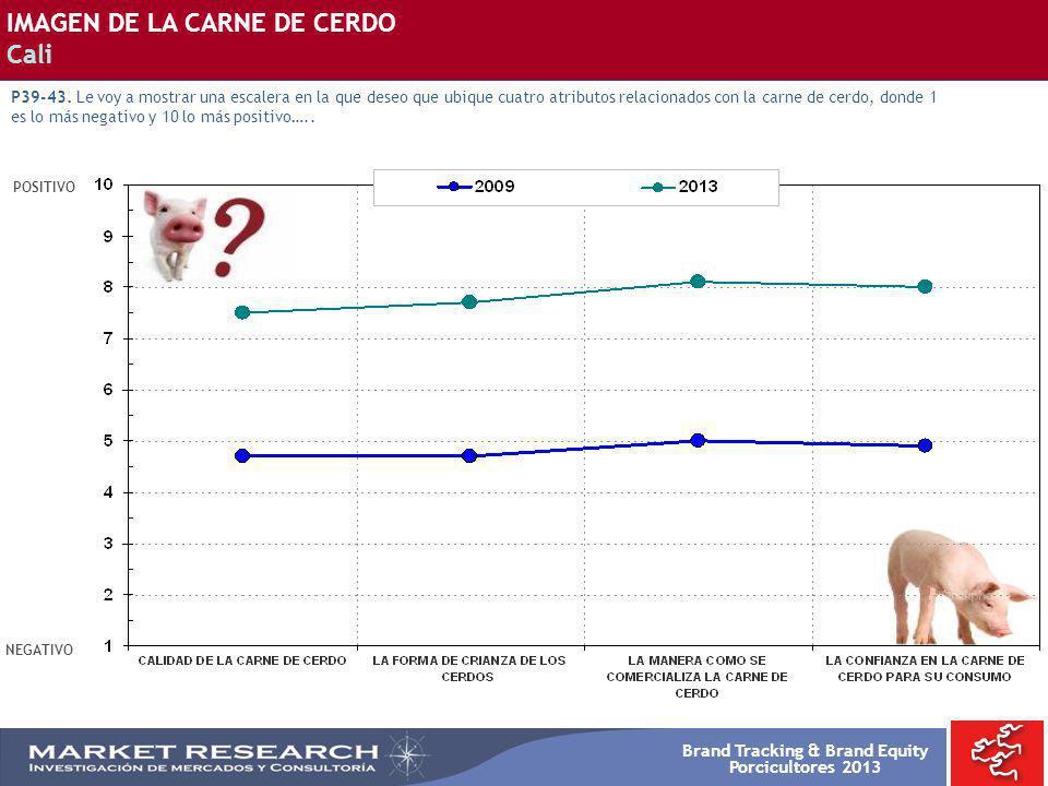Brand Tracking & Brand Equity Porcicultores 2013 POSITIVO NEGATIVO IMAGEN DE LA CARNE DE CERDO Cali P39-43. Le voy a mostrar una escalera en la que de