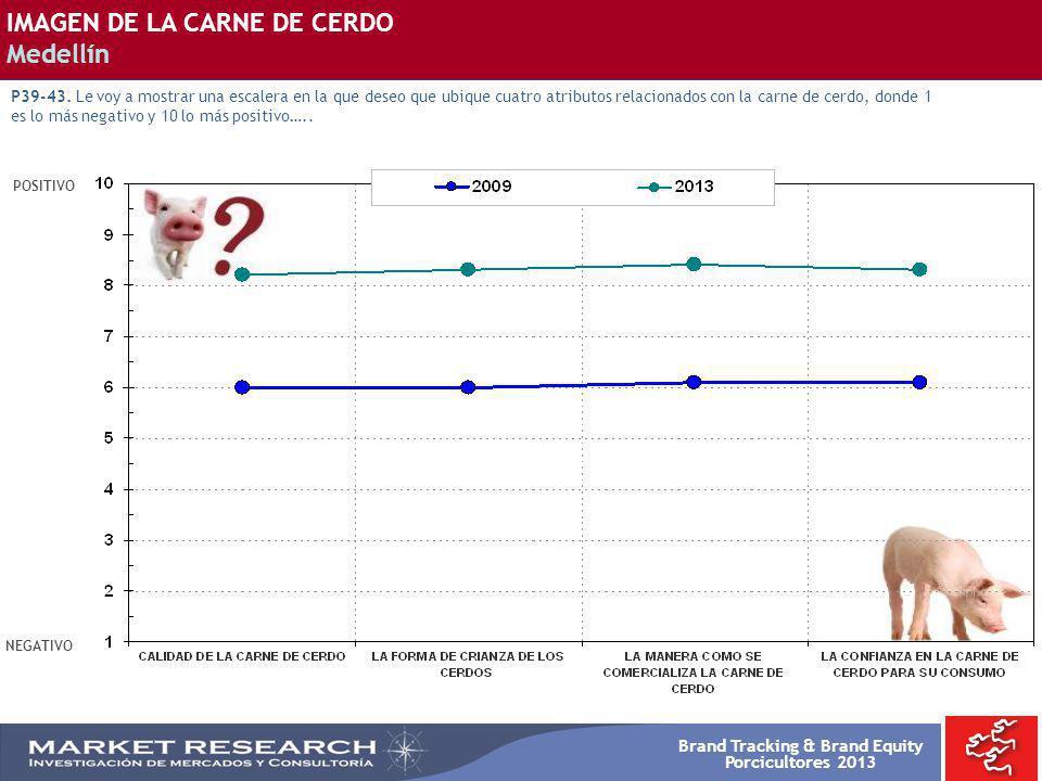 Brand Tracking & Brand Equity Porcicultores 2013 POSITIVO NEGATIVO IMAGEN DE LA CARNE DE CERDO Medellín P39-43. Le voy a mostrar una escalera en la qu