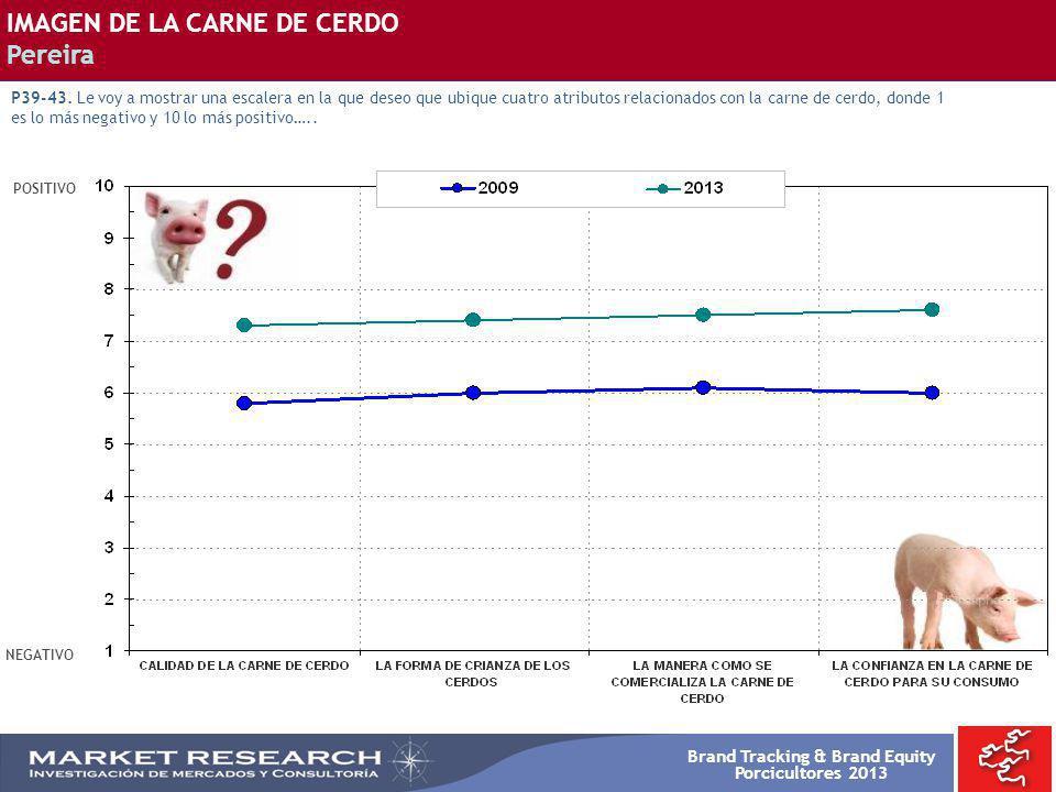 Brand Tracking & Brand Equity Porcicultores 2013 POSITIVO NEGATIVO IMAGEN DE LA CARNE DE CERDO Pereira P39-43. Le voy a mostrar una escalera en la que