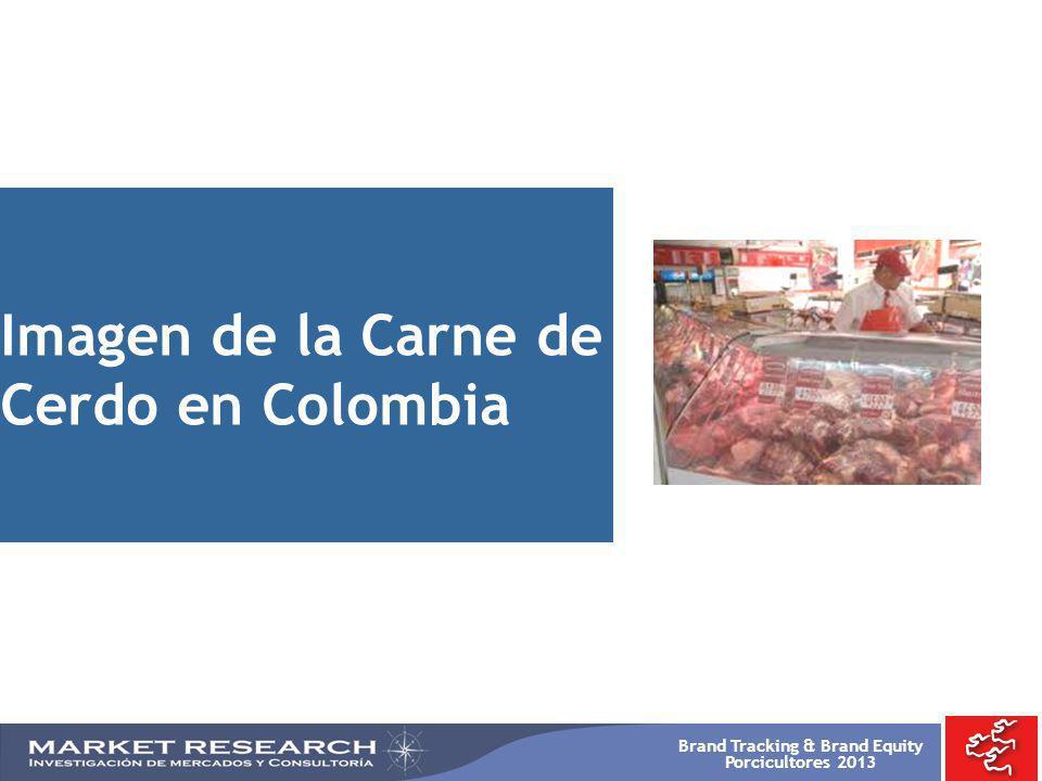 Brand Tracking & Brand Equity Porcicultores 2013 Imagen de la Carne de Cerdo en Colombia