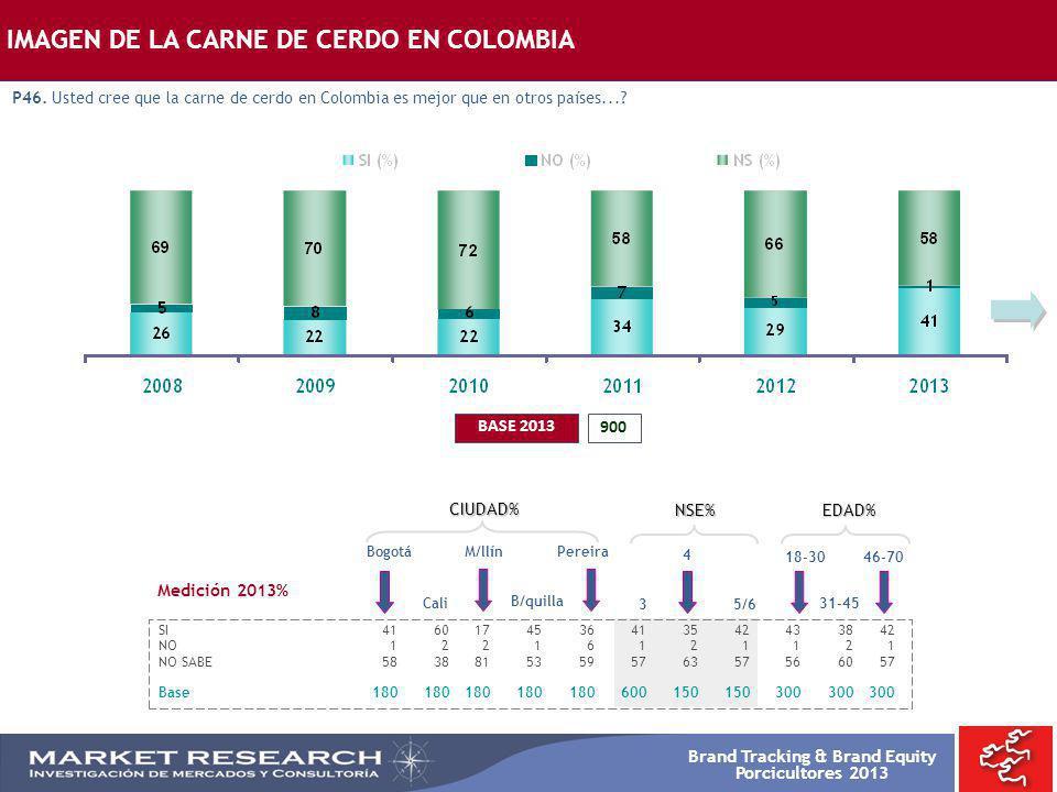 Brand Tracking & Brand Equity Porcicultores 2013 IMAGEN DE LA CARNE DE CERDO EN COLOMBIA P46. Usted cree que la carne de cerdo en Colombia es mejor qu