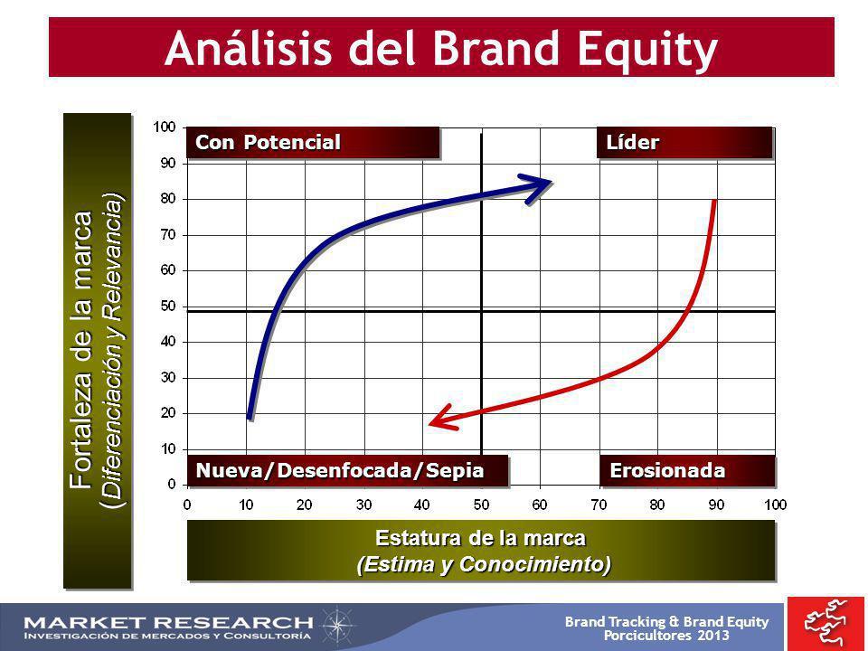 Brand Tracking & Brand Equity Porcicultores 2013 Análisis del Brand Equity Nueva/Desenfocada/SepiaNueva/Desenfocada/Sepia LíderLíder Con Potencial Ero