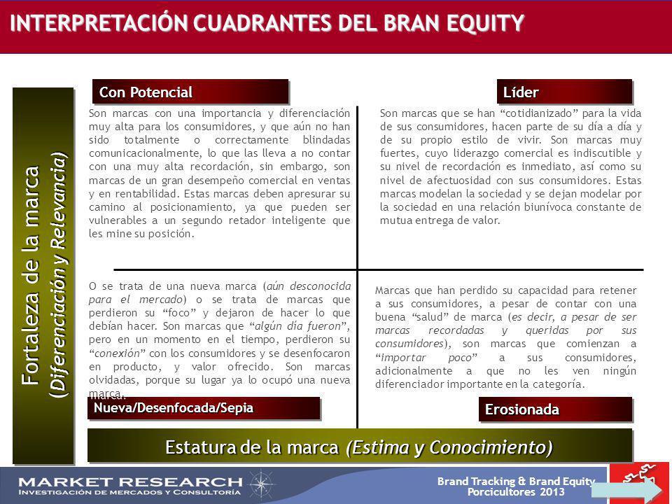 Brand Tracking & Brand Equity Porcicultores 2013 INTERPRETACIÓN CUADRANTES DEL BRAN EQUITY Nueva/Desenfocada/SepiaNueva/Desenfocada/Sepia LíderLíder C