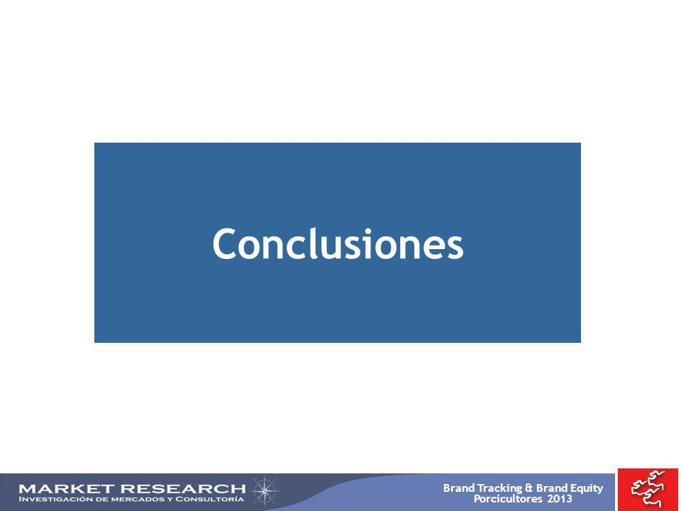 Brand Tracking & Brand Equity Porcicultores 2013 Conclusiones