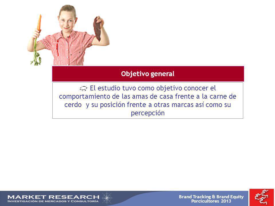Brand Tracking & Brand Equity Porcicultores 2013 -TOTAL 2008 %- -TOTAL 2009 %- ARROZ PAPA VERDURA GRANOS YUCA SALSAS ENSALADA PLATANO FRUTAS HUEVOS AJI AREPA OTROS ACOMPAÑANTES BASE: 873 Resp.