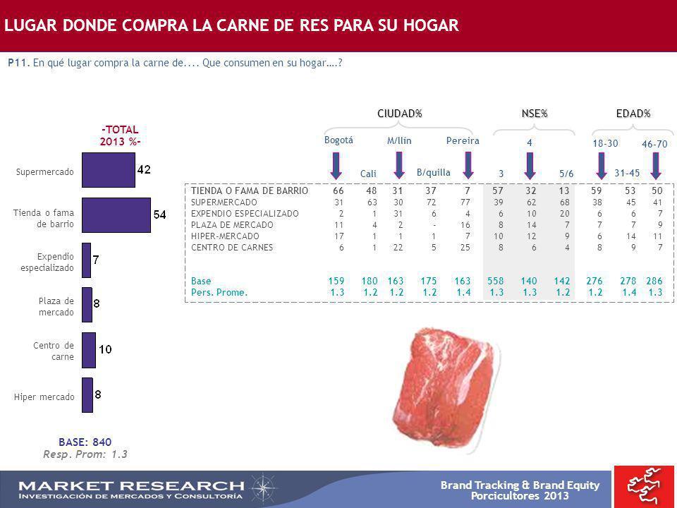 Brand Tracking & Brand Equity Porcicultores 2013 TIENDA O FAMA DE BARRIO664831377573213595350 SUPERMERCADO3163307277396268384541 EXPENDIO ESPECIALIZAD