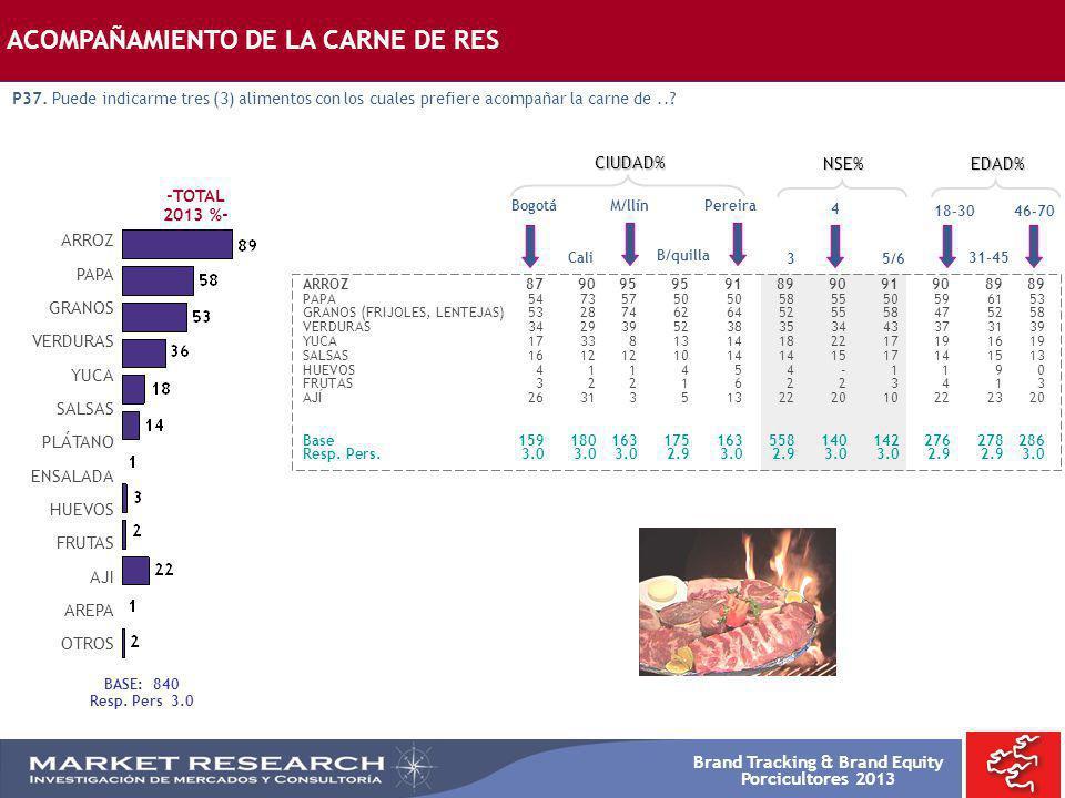 Brand Tracking & Brand Equity Porcicultores 2013 Bogotá ARROZ8790959591899091908989 PAPA5473575050585550596153 GRANOS (FRIJOLES, LENTEJAS)532874626452