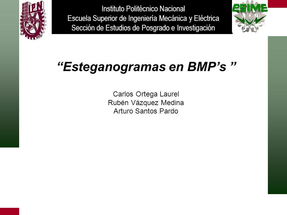 Esteganogramas en BMPs Carlos Ortega Laurel Rubén Vázquez Medina Arturo Santos Pardo Instituto Politécnico Nacional Escuela Superior de Ingeniería Mec