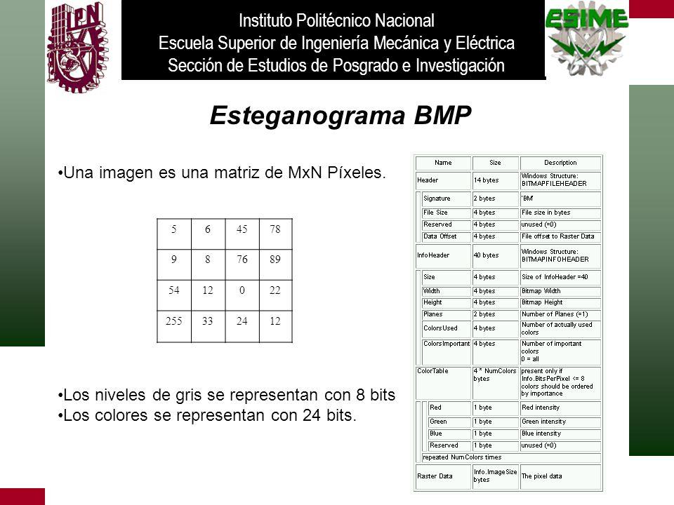 Esteganograma BMP Una imagen es una matriz de MxN Píxeles. Los niveles de gris se representan con 8 bits Los colores se representan con 24 bits. Insti