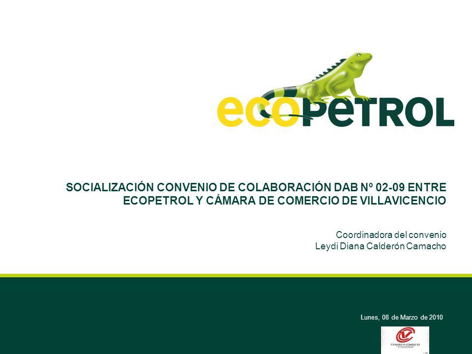 Lunes, 08 de Marzo de 2010 SOCIALIZACIÓN CONVENIO DE COLABORACIÓN DAB Nº 02-09 ENTRE ECOPETROL Y CÁMARA DE COMERCIO DE VILLAVICENCIO Coordinadora del convenio Leydi Diana Calderón Camacho