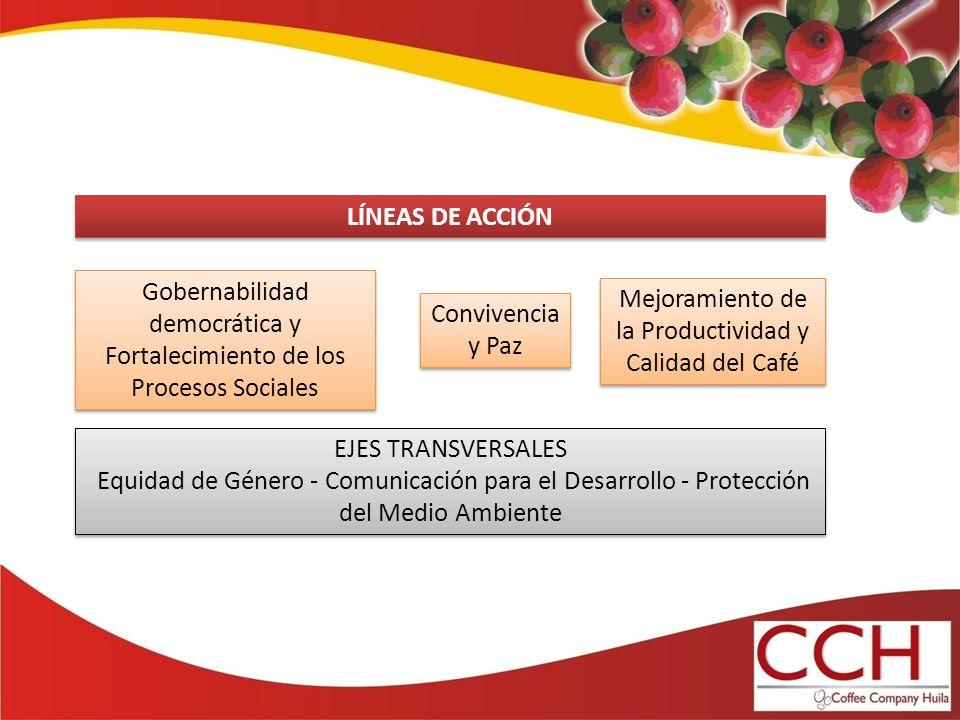 Gobernabilidad democrática y Fortalecimiento de los Procesos Sociales Mejoramiento de la Productividad y Calidad del Café Convivencia y Paz LÍNEAS DE ACCIÓN EJES TRANSVERSALES Equidad de Género - Comunicación para el Desarrollo - Protección del Medio Ambiente EJES TRANSVERSALES Equidad de Género - Comunicación para el Desarrollo - Protección del Medio Ambiente