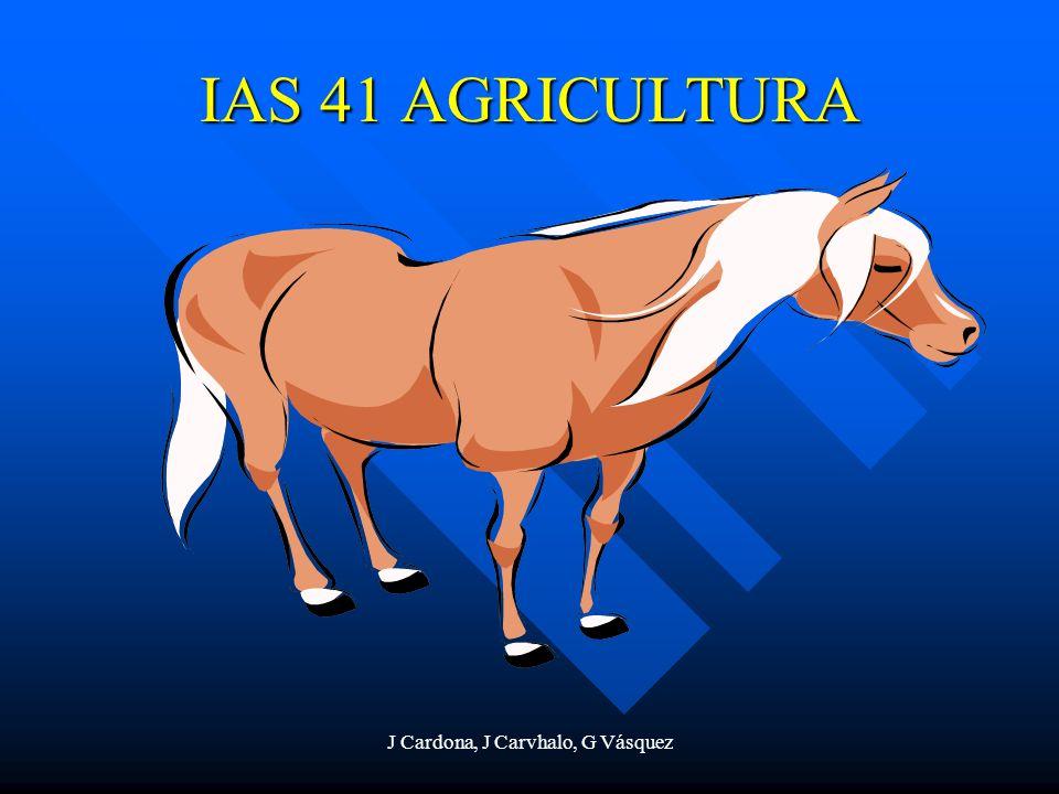 J Cardona, J Carvhalo, G Vásquez IAS 41 AGRICULTURA