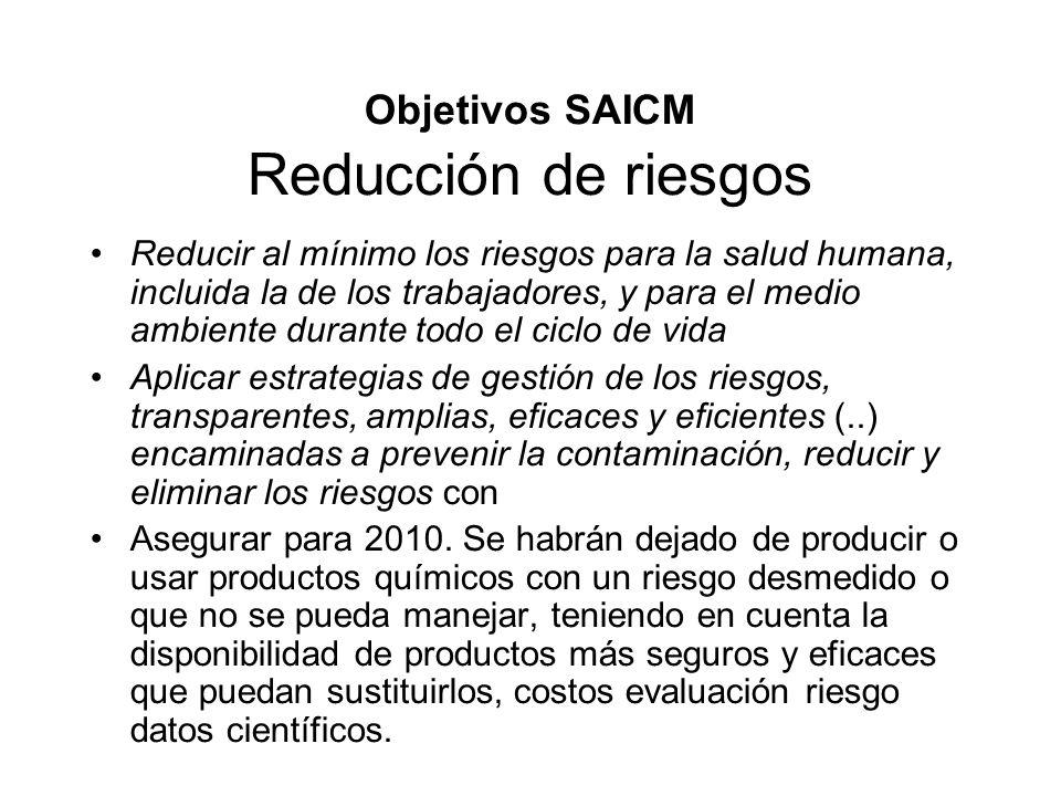 Objetivos SAICM Reducción de riesgos Reducir al mínimo los riesgos para la salud humana, incluida la de los trabajadores, y para el medio ambiente dur