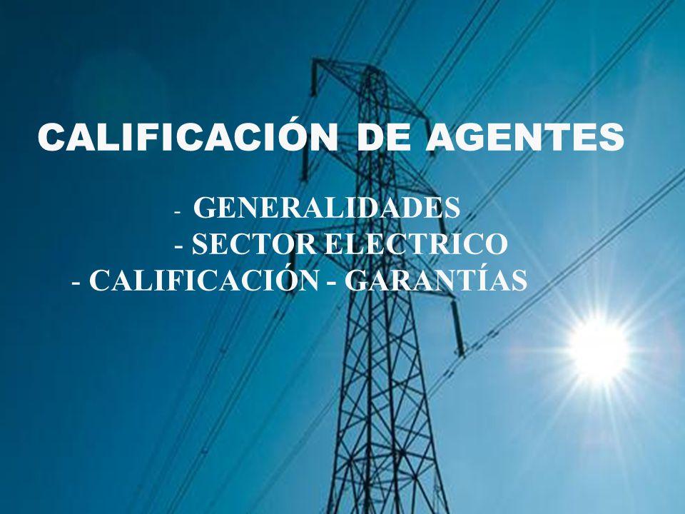 CALIFICACIÓN DE AGENTES - GENERALIDADES - SECTOR ELECTRICO - CALIFICACIÓN - GARANTÍAS