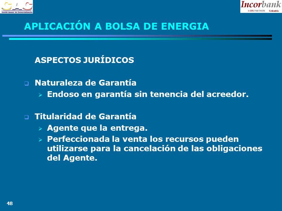 48 APLICACIÓN A BOLSA DE ENERGIA ASPECTOS JURÍDICOS Naturaleza de Garantía Endoso en garantía sin tenencia del acreedor.
