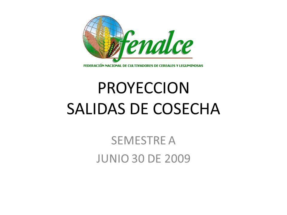 Salida cosechas maíz amarillo tecnificado semestre A 2009 Compromiso de compra nacional (3ª Subasta): 77.500 Tons