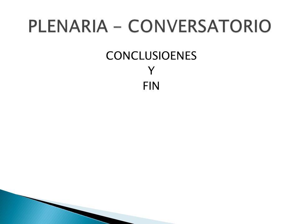 CONCLUSIOENES Y FIN