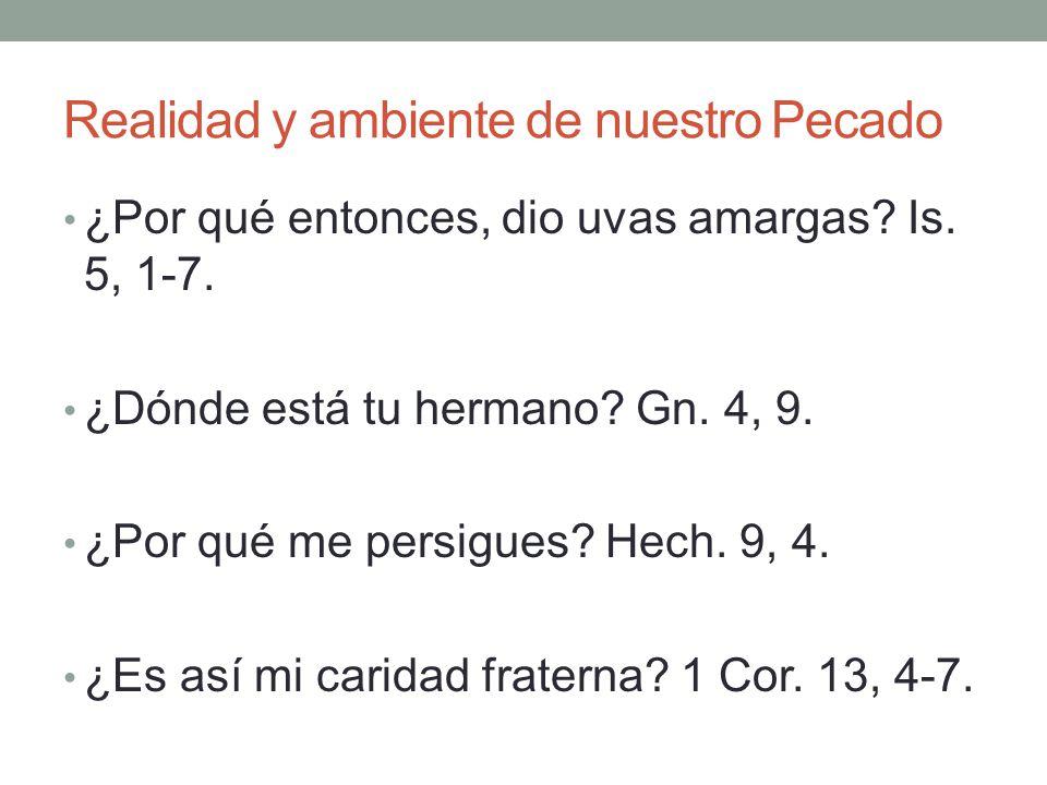 Realidad y ambiente de nuestro Pecado ¿Por qué entonces, dio uvas amargas? Is. 5, 1-7. ¿Dónde está tu hermano? Gn. 4, 9. ¿Por qué me persigues? Hech.