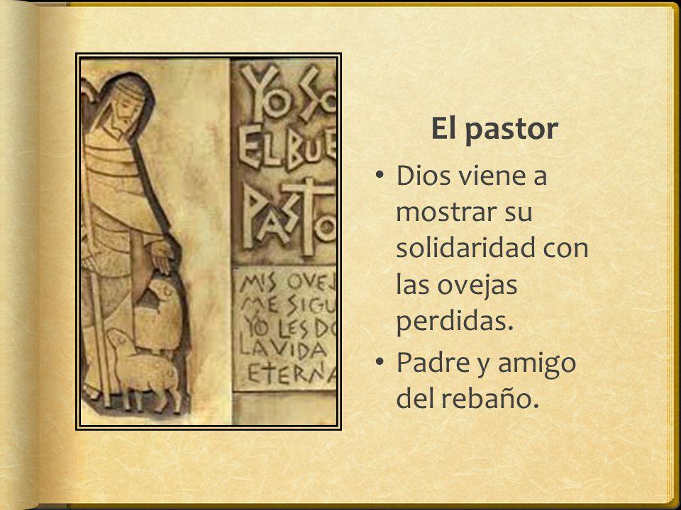 El pastor Dios viene a mostrar su solidaridad con las ovejas perdidas. Padre y amigo del rebaño.