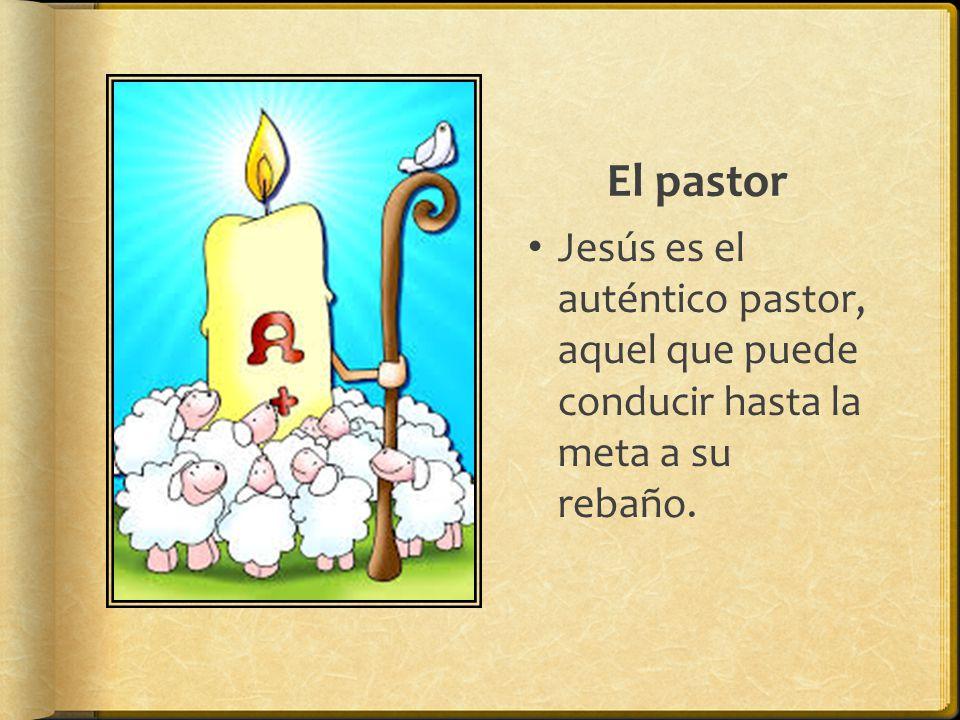 El pastor Jesús es el auténtico pastor, aquel que puede conducir hasta la meta a su rebaño.