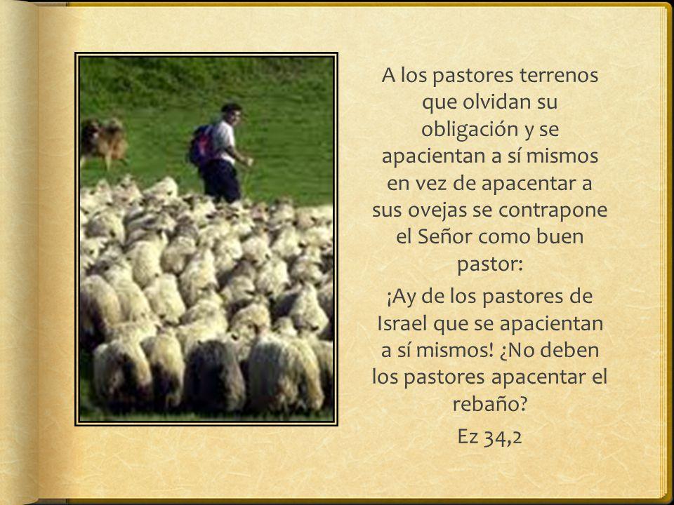 Escena típica de la vida pastoril
