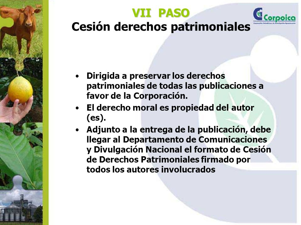 VII PASO VII PASO Cesión derechos patrimoniales Dirigida a preservar los derechos patrimoniales de todas las publicaciones a favor de la Corporación.