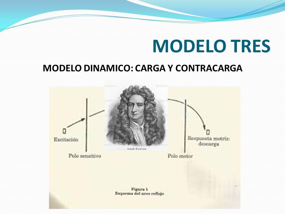 MODELO TRES MODELO DINAMICO: CARGA Y CONTRACARGA