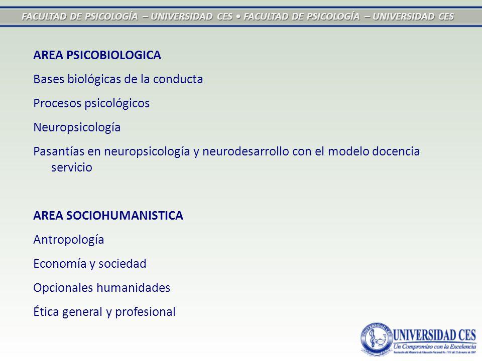 FACULTAD DE PSICOLOGÍA – UNIVERSIDAD CES FACULTAD DE PSICOLOGÍA – UNIVERSIDAD CES AREA PSICOBIOLOGICA Bases biológicas de la conducta Procesos psicoló