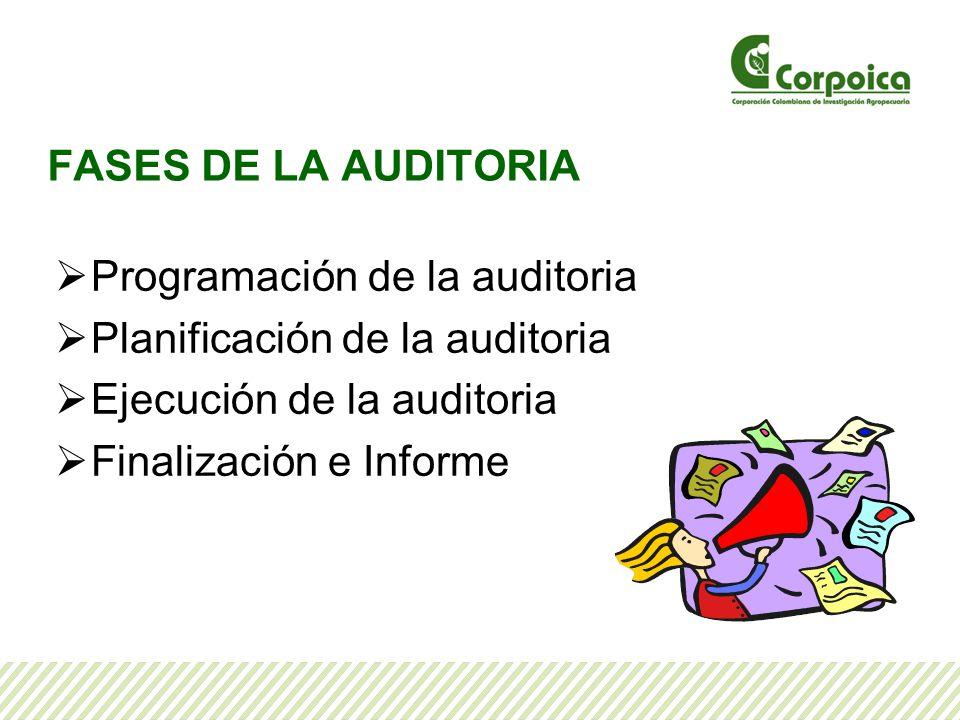 FASES DE LA AUDITORIA Programación de la auditoria Planificación de la auditoria Ejecución de la auditoria Finalización e Informe