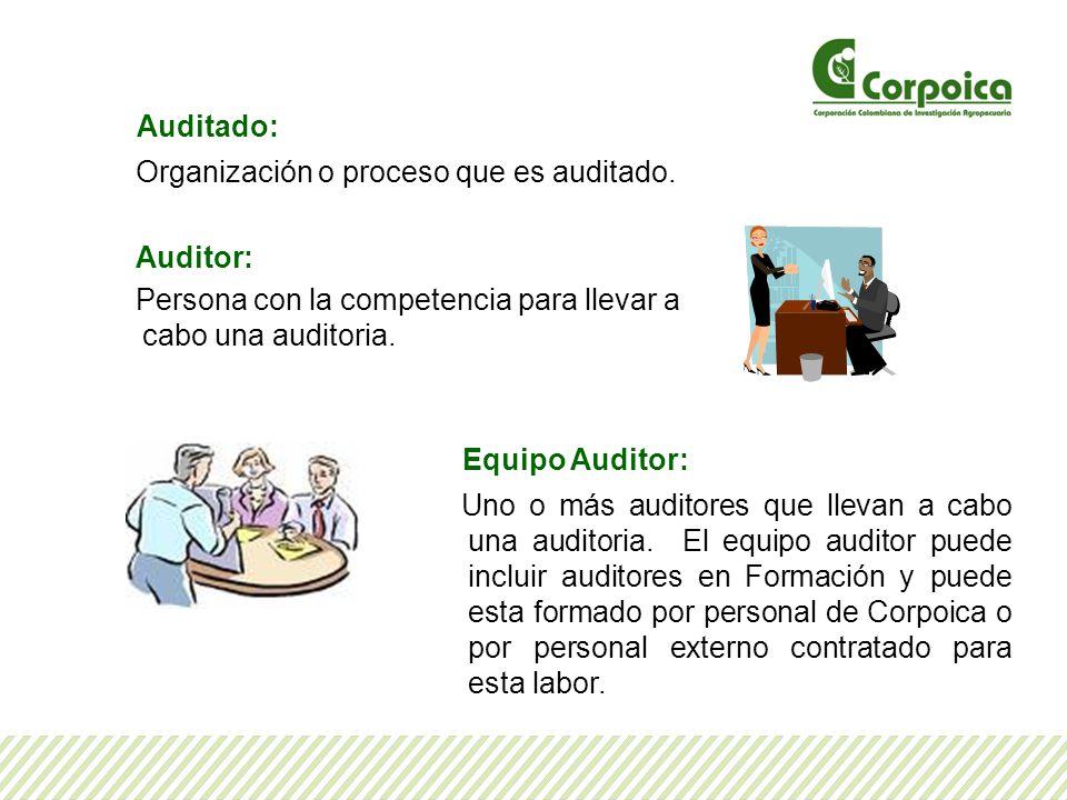 Auditado: Organización o proceso que es auditado. Auditor: Persona con la competencia para llevar a cabo una auditoria. Equipo Auditor: Uno o más audi