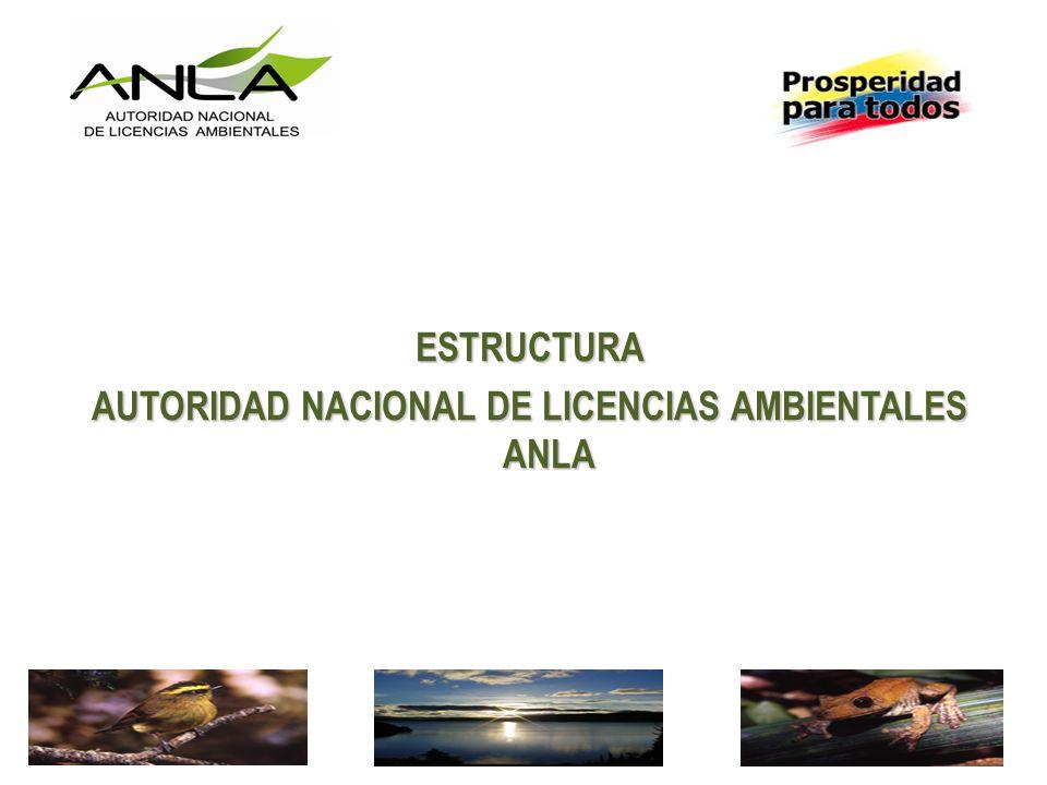 ESTRUCTURA AUTORIDAD NACIONAL DE LICENCIAS AMBIENTALES ANLA