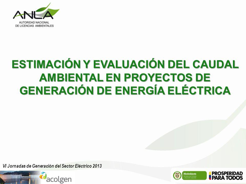 ESTIMACIÓN Y EVALUACIÓN DEL CAUDAL AMBIENTAL EN PROYECTOS DE GENERACIÓN DE ENERGÍA ELÉCTRICA VI Jornadas de Generación del Sector Eléctrico 2013